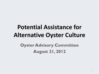 Potential Assistance for  Alternative Oyster Culture