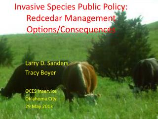 Invasive Species Public Policy: Redcedar  Management Options/Consequences