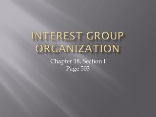 Interest Group Organization