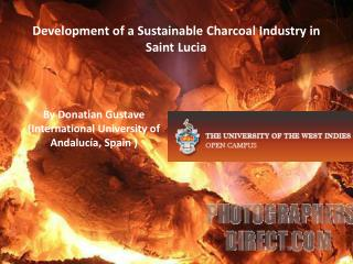 Development of a Sustainable Charcoal Industry in Saint Lucia