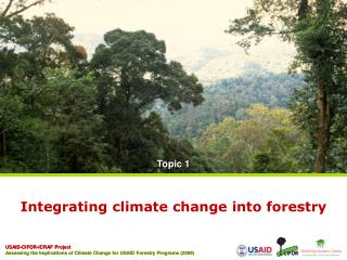 Integrating climate change into forestry