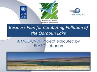Business Plan for Combating Pollution of the  Qaraoun  Lake