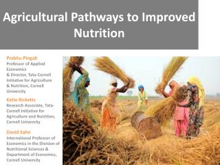 Agricultural Pathways to Improved  Nutrition