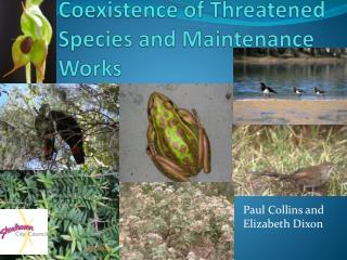 Coexistence of Threatened Species and Maintenance Works
