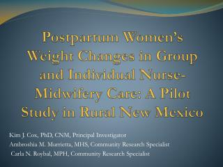 Postpartum Women's Weight Changes in Group and Individual Nurse-Midwifery Care: A Pilot Study in Rural New Mexico