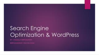 Search Engine  O ptimization & WordPress