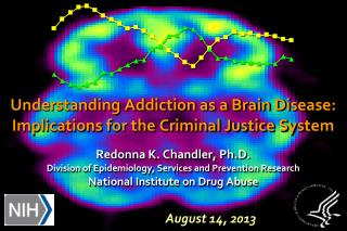 Understanding Addiction as a Brain  Disease: Implications for the Criminal Justice System