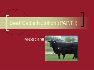 Beef Cattle Nutrition (PART I)