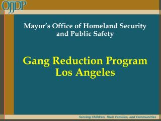 Mayor's Office of Homeland Security  and Public Safety  Gang Reduction Program Los Angeles