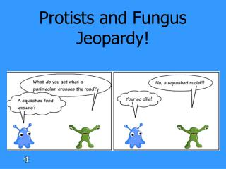 Protists and Fungus Jeopardy!