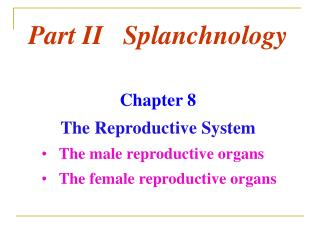 Part II Splanchnology Chapter 8 The Reproductive System The male reproductive organs The female reproductive org