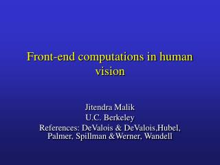 Front-end computations in human vision