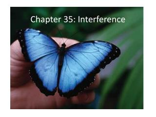 Chapter 35: Interference