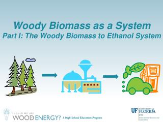 Woody Biomass as a System Part I: The Woody Biomass to Ethanol System