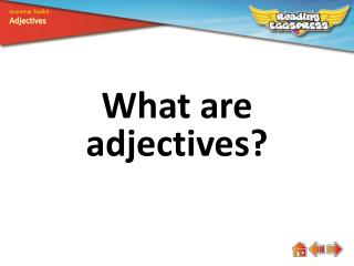 What are adjectives ?