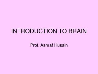 INTRODUCTION TO BRAIN