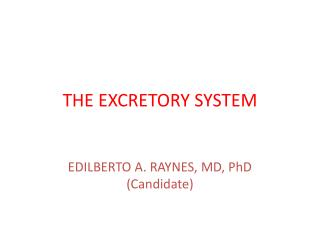 THE EXCRETORY SYSTEM