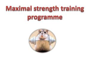 Maximal strength training  programme