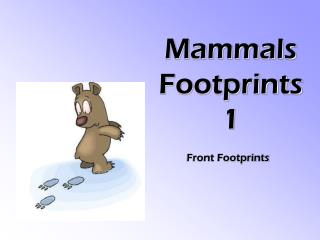 Mammals Footprints 1