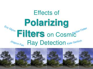 Effects of Polarizing Filters on Cosmic Ray Detection