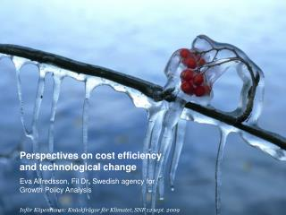 Perspectives on cost efficiency and technological change  Eva Alfredsson, Fil Dr ,  Swedish agency for Growth Policy An