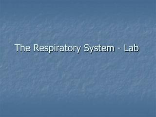 The Respiratory System - Lab