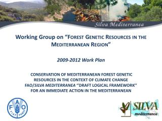 I) Objectives The overall objective  of the  programme  is to contribute to adaptation of Mediterranean Forest to Climat