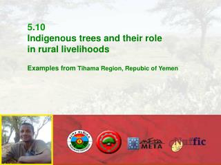 5.10  Indigenous trees and their role  in rural livelihoods Examples from  Tihama Region, Repubic of Yemen