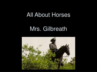All About Horses Mrs. Gilbreath