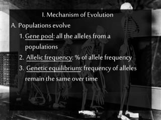 I. Mechanism of Evolution  Populations evolve Gene pool : all the alleles from a populations Allelic frequency : % of a