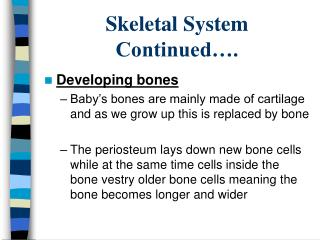 Skeletal System Continued….