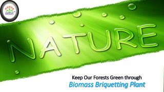 Keep Our Forests Green through Biomass Briquetting Plant