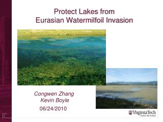Protect Lakes from  Eurasian Watermilfoil Invasion