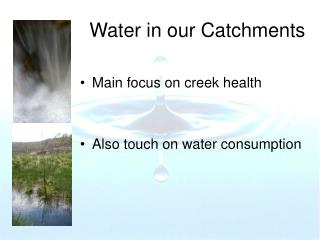 Water in our Catchments