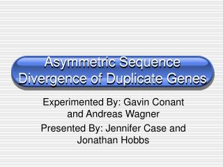 Asymmetric Sequence Divergence of Duplicate Genes