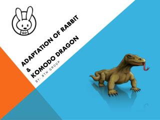 ADAPTATION OF RABBIT  &  KOMODO DRAGON