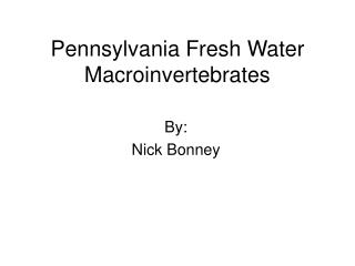 Pennsylvania Fresh Water Macroinvertebrates