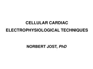 CELLULAR CARDIAC ELECTROPHYSIOLOGICAL TECHNIQUES