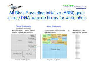 All Birds Barcoding Initiative (ABBI) goal: create DNA barcode library for world birds