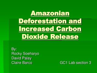 Amazonian Deforestation and Increased Carbon Dioxide Release