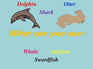 Dolphin 			Otter Shark What can you see? Whale Starfish Swordfish