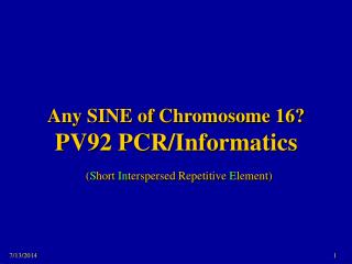 Any SINE of Chromosome 16? PV92 PCR/Informatics  ( S hort  In terspersed Repetitive  E lement)