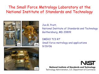 The Small Force Metrology Laboratory at the National Institute of Standards and Technology