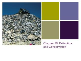 Chapter 25: Extinction and Conservation