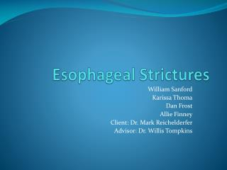Esophageal Strictures
