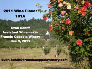 2011 Wine Flavor 101A Evan Schiff Assistant Winemaker Francis Coppola Winery Dec 9, 2011