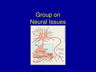 Group on Neural Issues