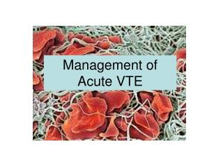 Management of Acute VTE
