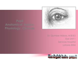 Pupil  Anatomical  basics,  Physiology, Clinicals