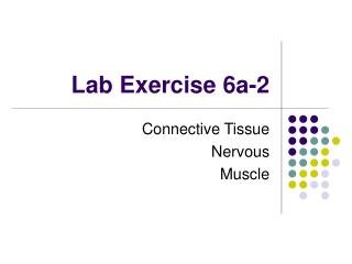 Lab Exercise 6a-2